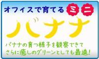 banana-logo2_convert_20100214172414.jpg