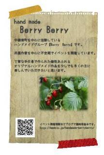 Berry Berryハガキサイズ通年用フライヤー