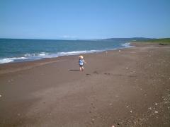 2歳の海岸