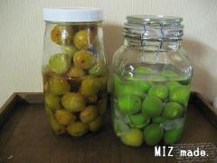 梅シロップ&梅酒