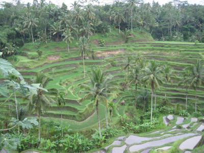 バリ島15