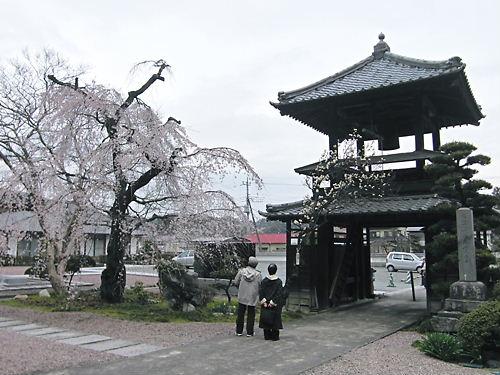 西光寺 (3)