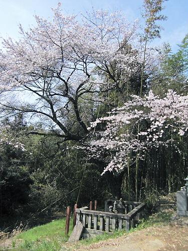 水野長勝の墓