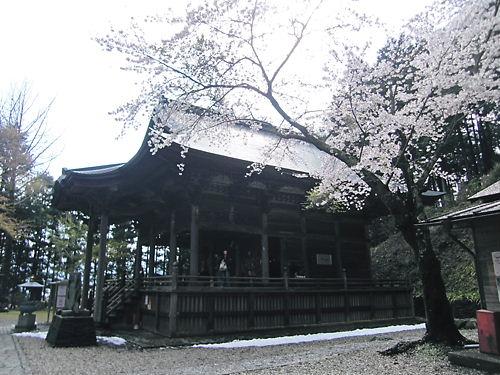 観音堂と桜 (2)
