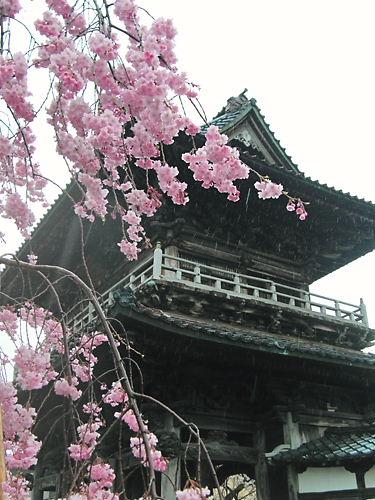 宝光寺 (3)