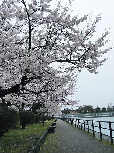 新発田公園