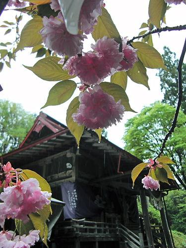 九戸神社 (4)