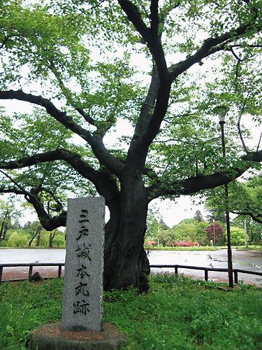 三戸城本丸