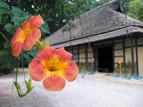 平山家住宅 (2)