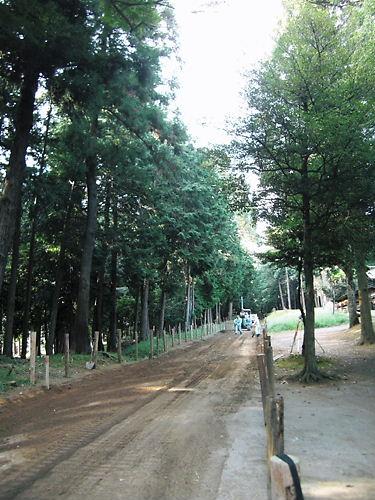 伊波比神社 (5)