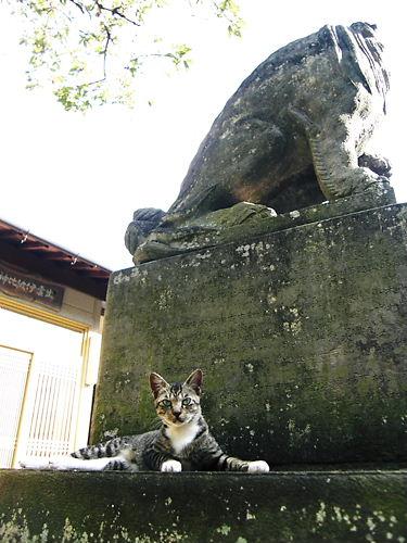伊波比神社