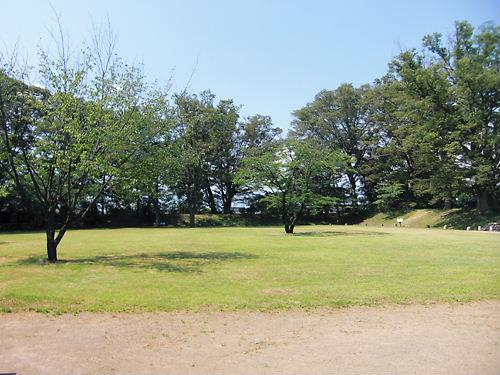 伴野城 (3)
