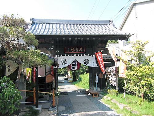 ぴんころ (5)