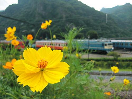 鉄道文化村