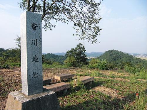 皆川城 (5)
