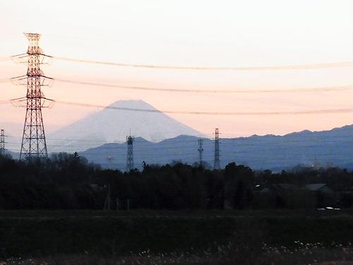 川島白鳥2010