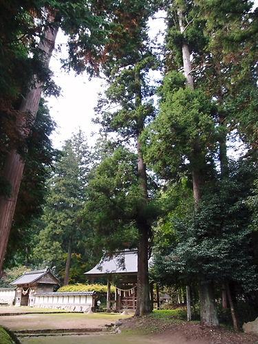 粟鹿神社 (6)