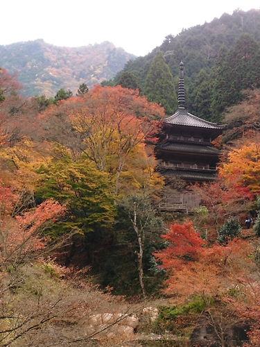 高源寺 (7)
