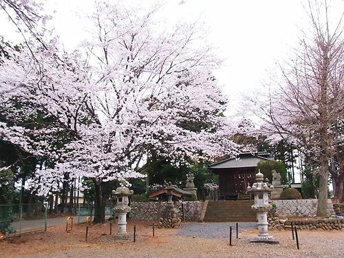 三嶋神社 (3)