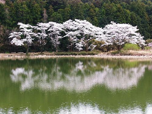 東山沼 (3)