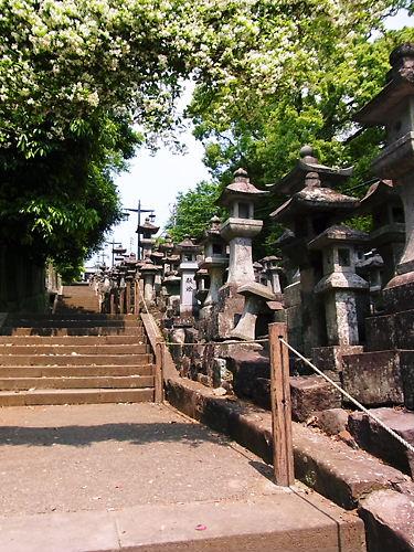 本妙寺長い階段