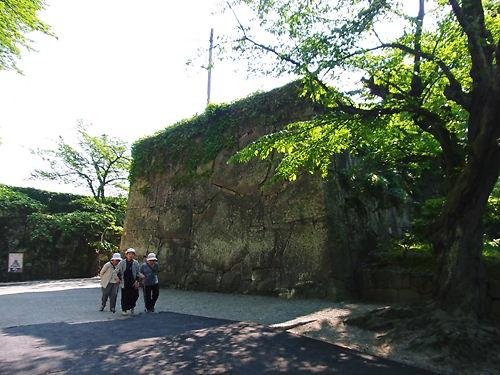 若松城 (3)