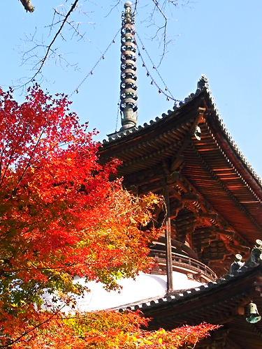 大塔と紅葉