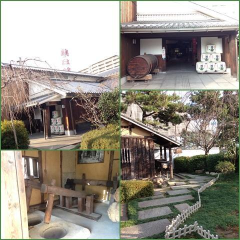 kiku_convert_20131225215603.jpg