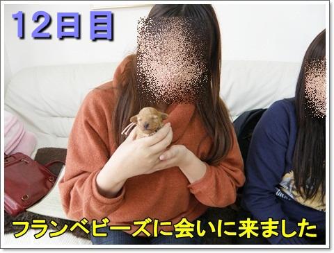 P3250040.jpg