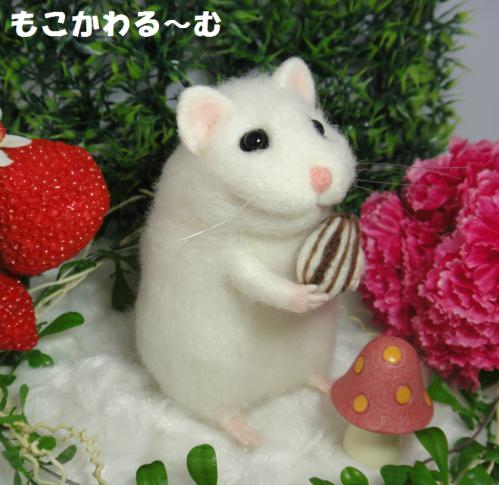 ハムちゃん1-2