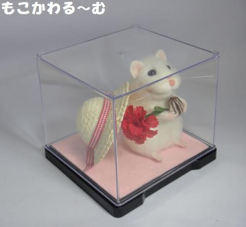 ハムちゃん3-2