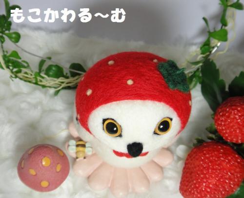苺フクマト4