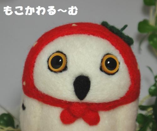 苺フクマト5