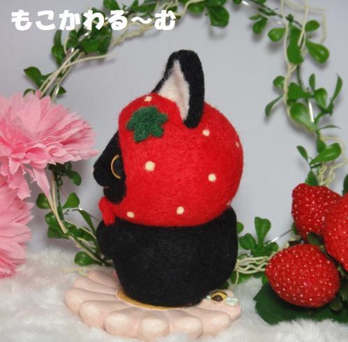 苺マト黒猫3