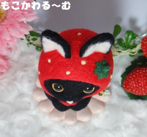 苺マト黒猫5