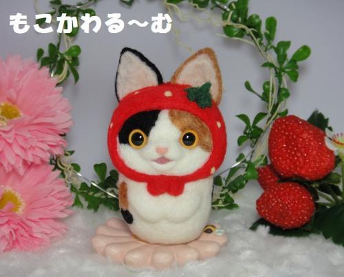 苺マト三毛猫1