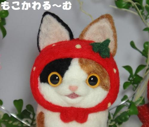 苺マト三毛猫2