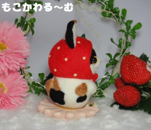 苺マト三毛猫3