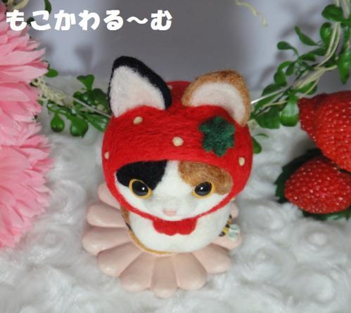 苺マト三毛猫5