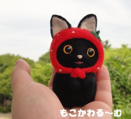 苺マト黒猫6