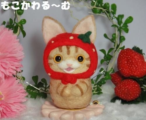 苺マト茶トラ1