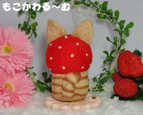 苺マト茶トラ2