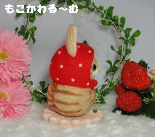 苺マト茶トラ3