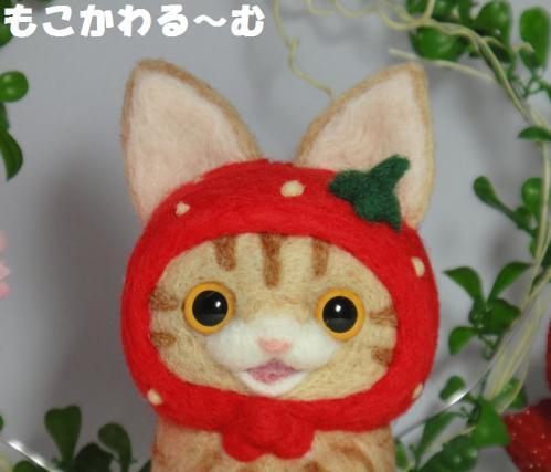 苺マト茶トラ4