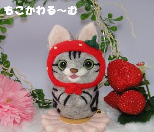 苺マトアメショ1
