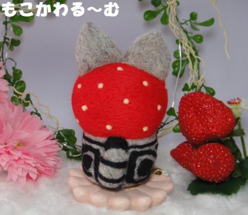 苺マトアメショ3