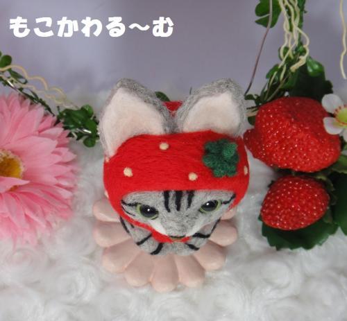 苺マトアメショ5