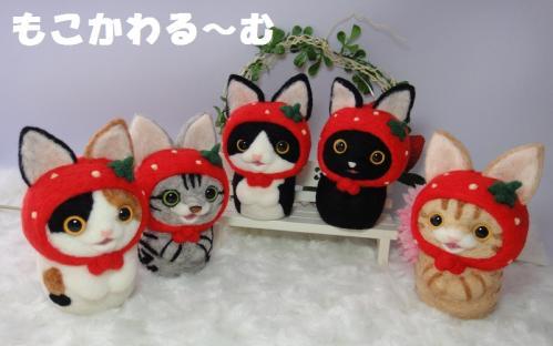 苺マトアメショ6