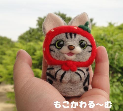 苺マトアメショ7