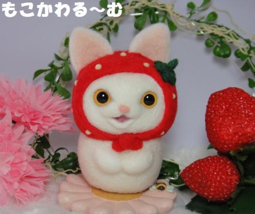 苺マト白猫1